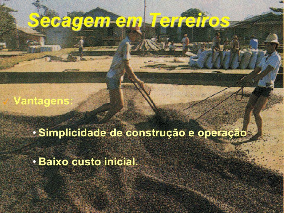 Secagem em Terreiros Vantagens: Simplicidade de construção e operação