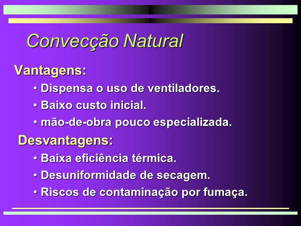 Convecção Natural Vantagens: Desvantagens: