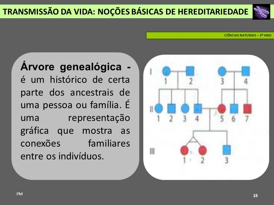 TRANSMISSÃO DA VIDA: NOÇÕES BÁSICAS DE HEREDITARIEDADE