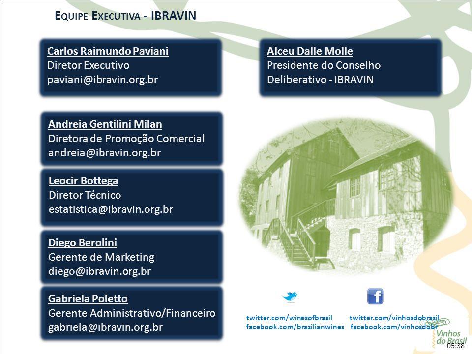Equipe Executiva - IBRAVIN