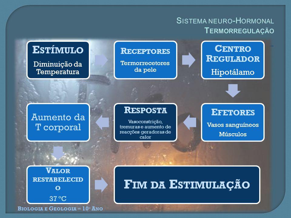Sistema neuro-Hormonal Termorregulação
