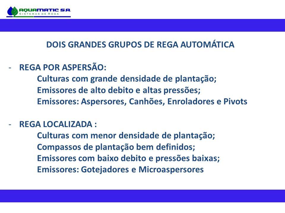DOIS GRANDES GRUPOS DE REGA AUTOMÁTICA