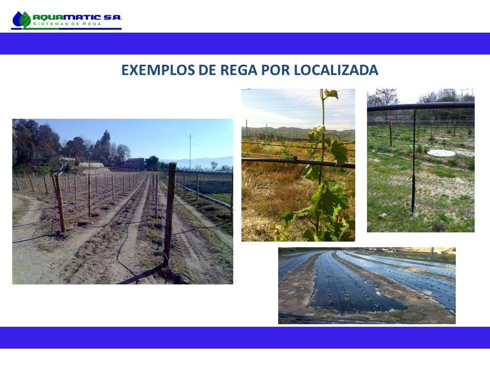 EXEMPLOS DE REGA POR LOCALIZADA