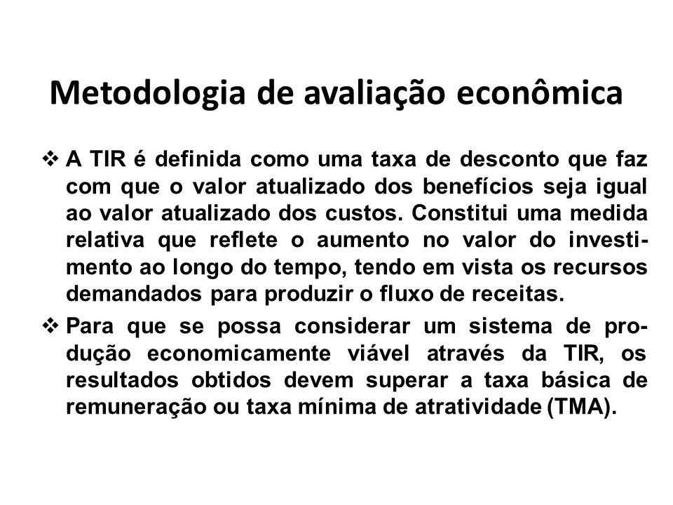 Metodologia de avaliação econômica