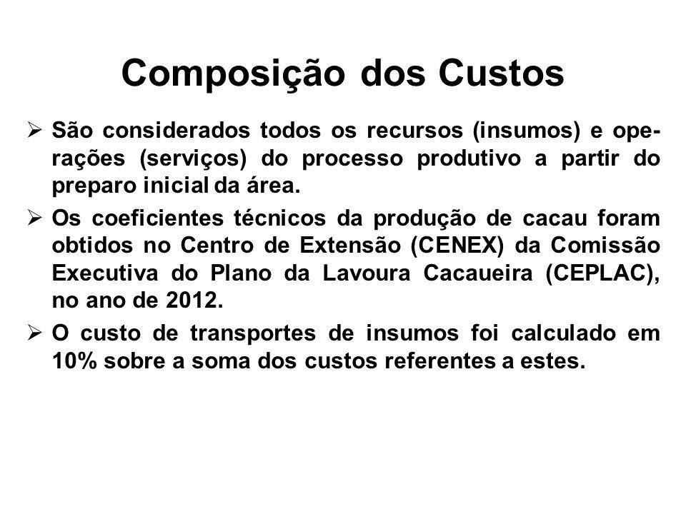 Composição dos Custos São considerados todos os recursos (insumos) e ope-rações (serviços) do processo produtivo a partir do preparo inicial da área.