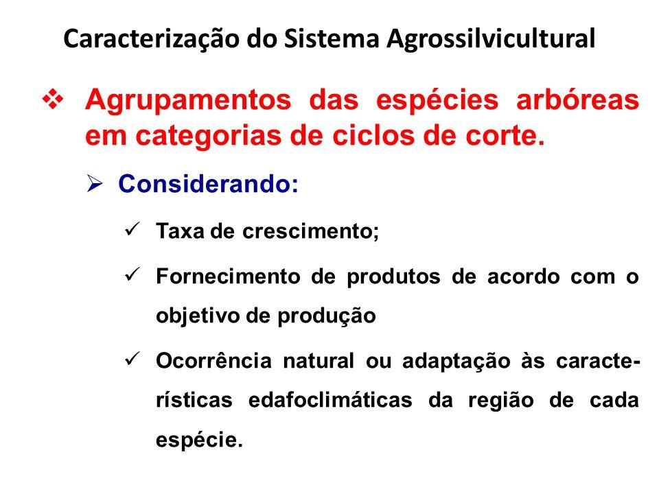 Caracterização do Sistema Agrossilvicultural