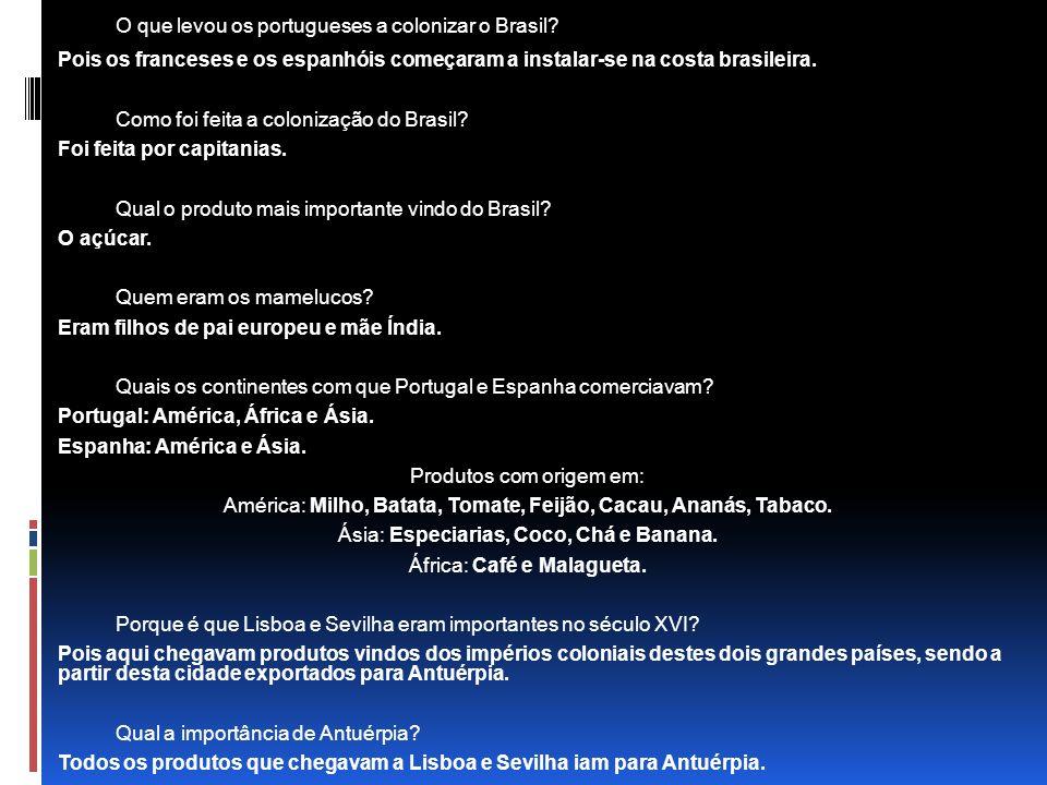 O que levou os portugueses a colonizar o Brasil