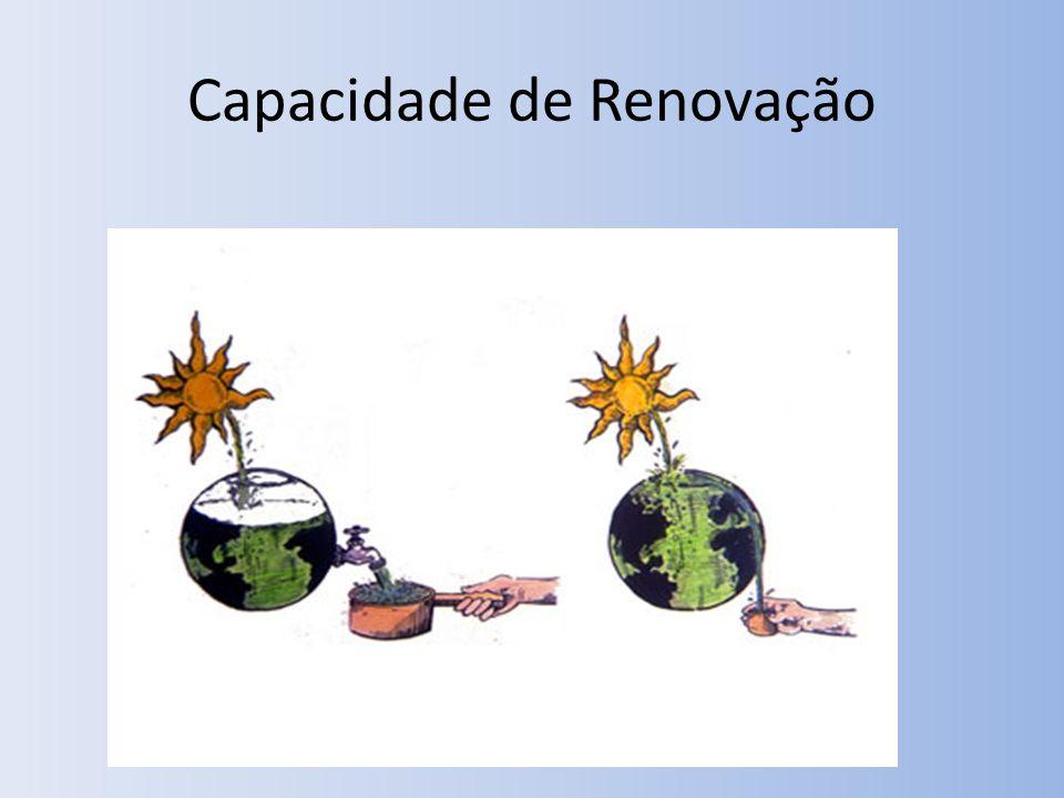 Capacidade de Renovação