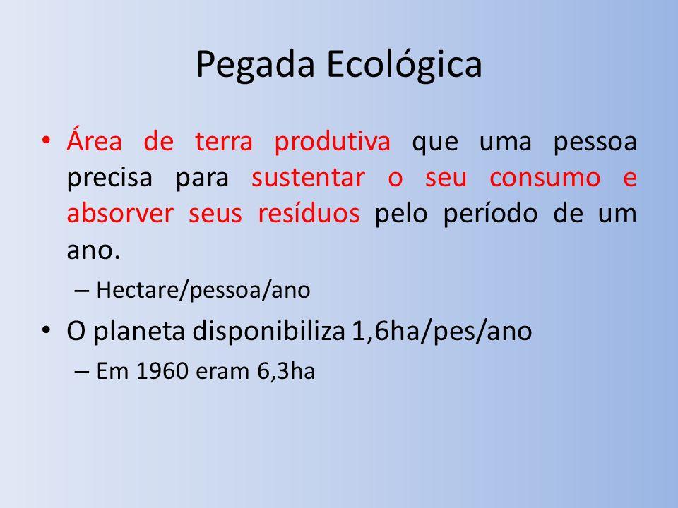 Pegada Ecológica Área de terra produtiva que uma pessoa precisa para sustentar o seu consumo e absorver seus resíduos pelo período de um ano.