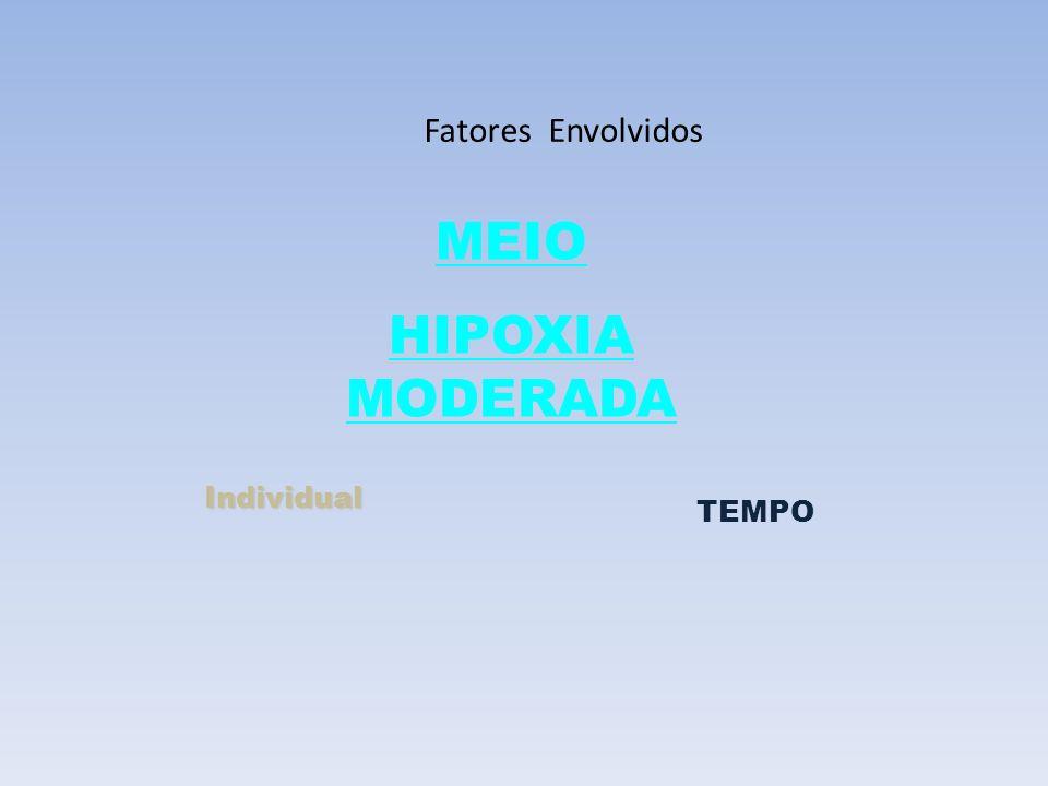 Fatores Envolvidos MEIO HIPOXIA MODERADA Individual TEMPO