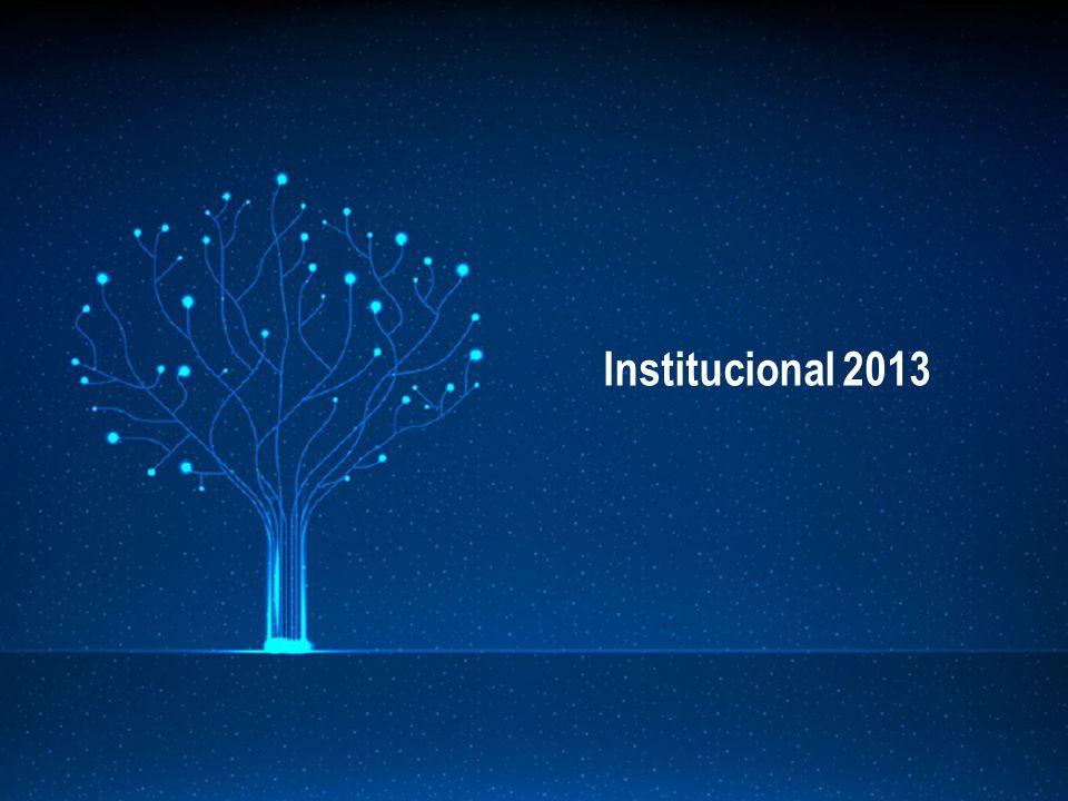 Institucional 2013