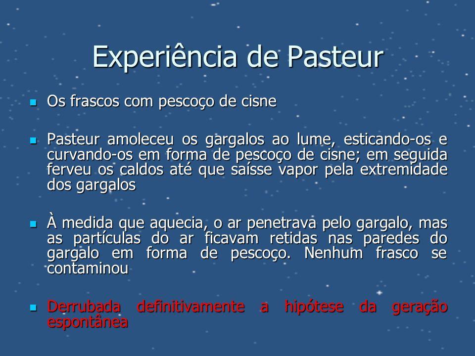 Experiência de Pasteur