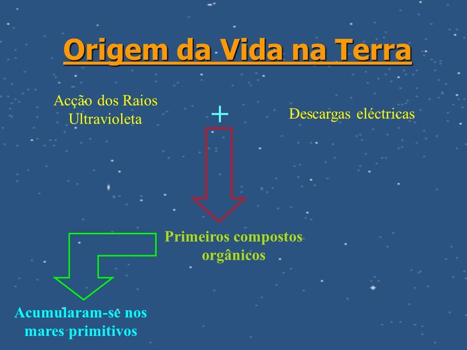 Primeiros compostos orgânicos Acumularam-se nos mares primitivos
