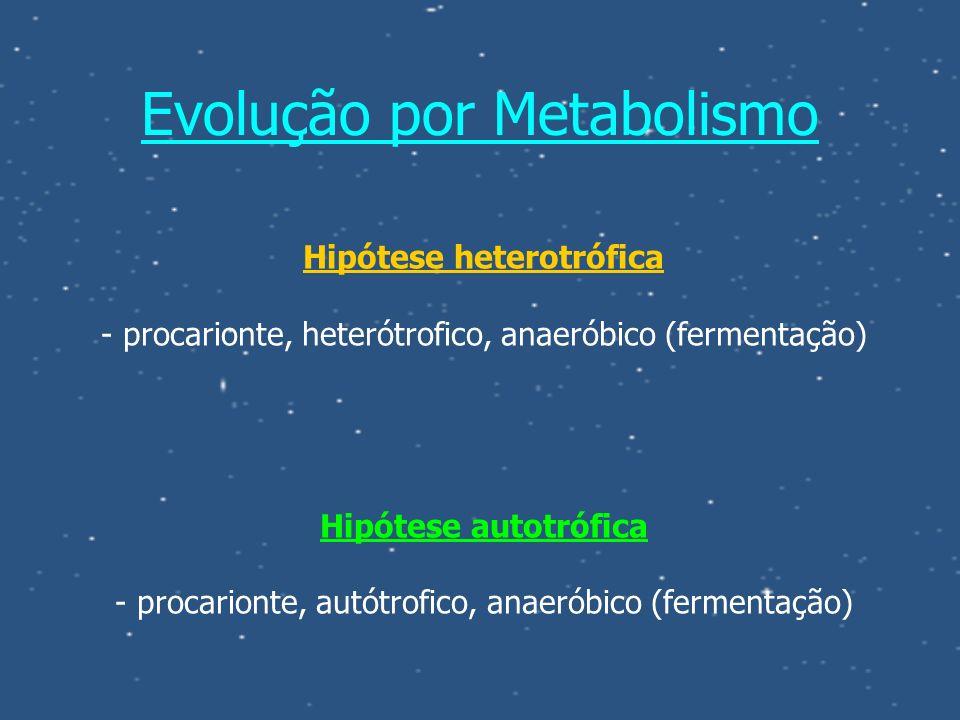 Evolução por Metabolismo