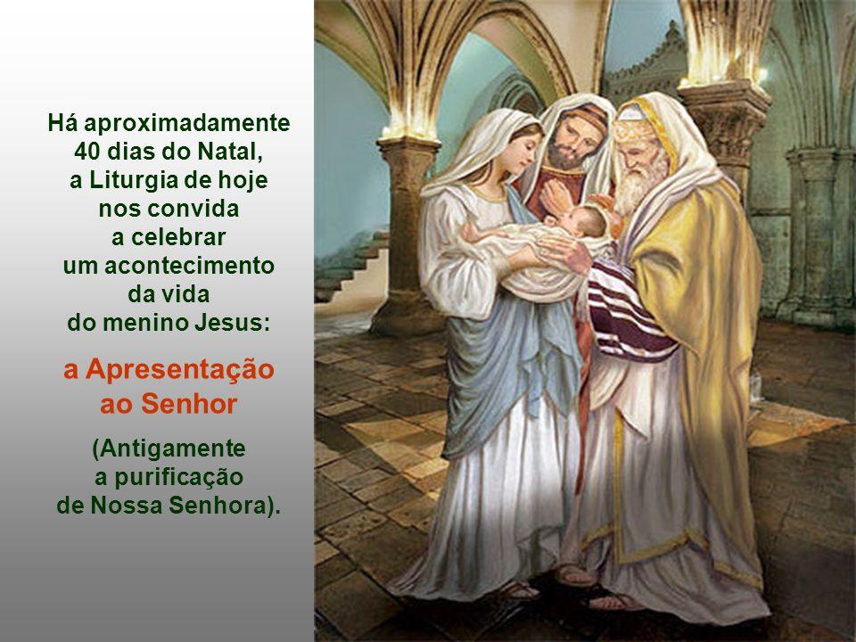 Há aproximadamente 40 dias do Natal, a Liturgia de hoje nos convida