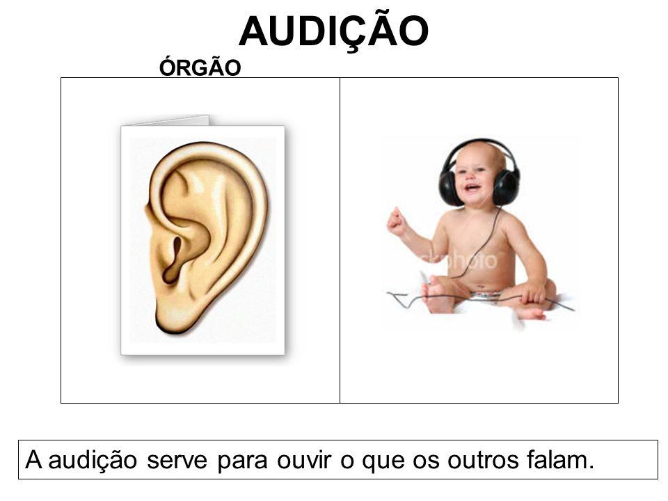 AUDIÇÃO ÓRGÃO A audição serve para ouvir o que os outros falam.