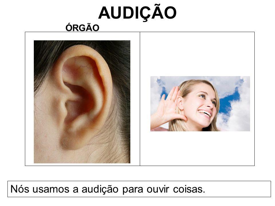 AUDIÇÃO ÓRGÃO Nós usamos a audição para ouvir coisas.