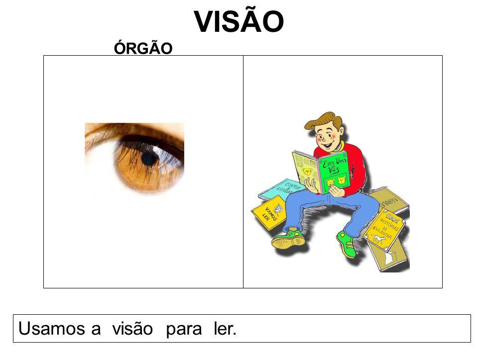 VISÃO ÓRGÃO Usamos a visão para ler.