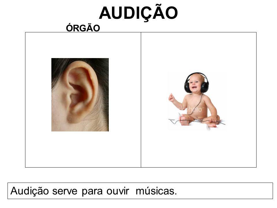 AUDIÇÃO ÓRGÃO Audição serve para ouvir músicas.