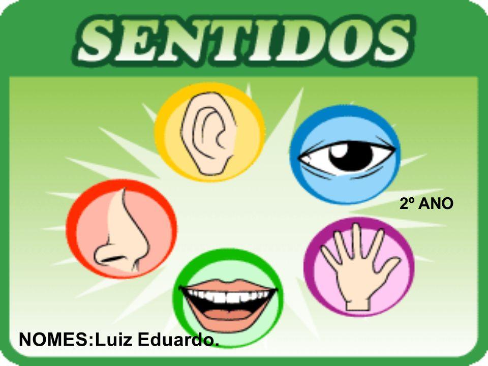 2º ANO NOMES:Luiz Eduardo.