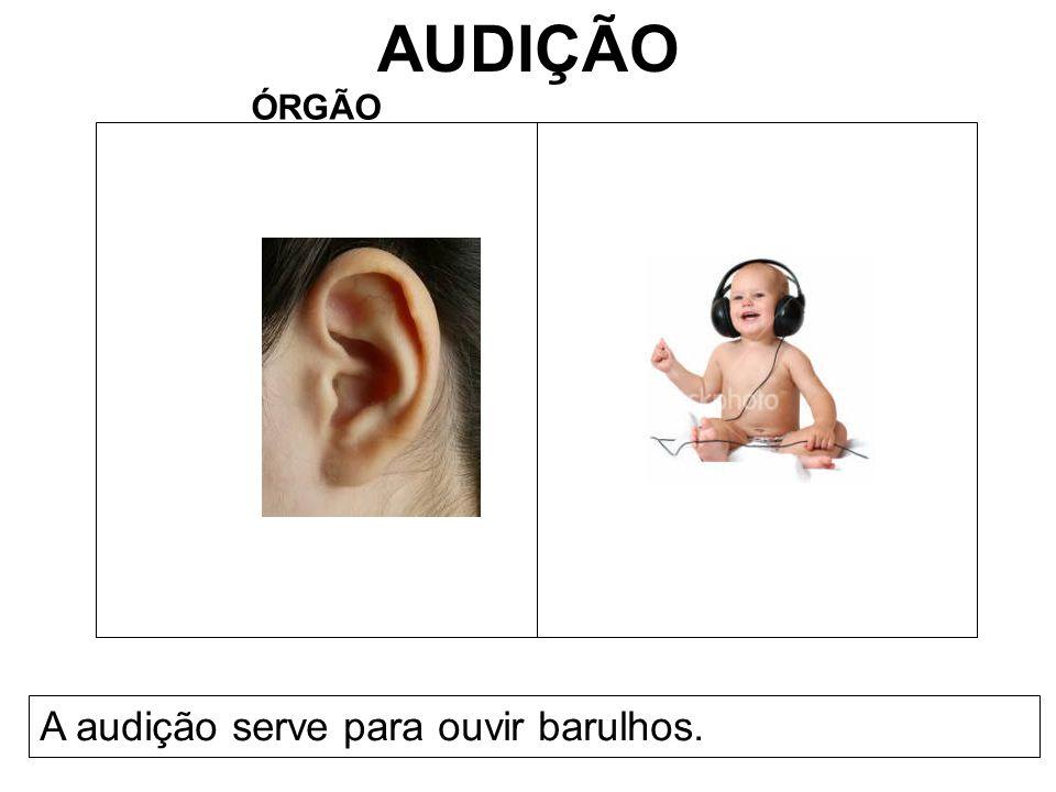 AUDIÇÃO ÓRGÃO A audição serve para ouvir barulhos.