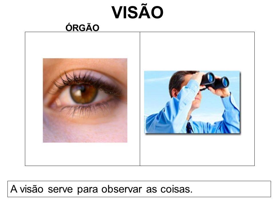 VISÃO ÓRGÃO A visão serve para observar as coisas.