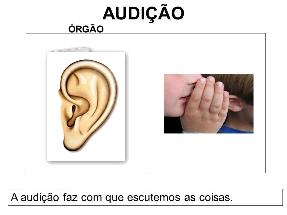 AUDIÇÃO ÓRGÃO A audição faz com que escutemos as coisas.