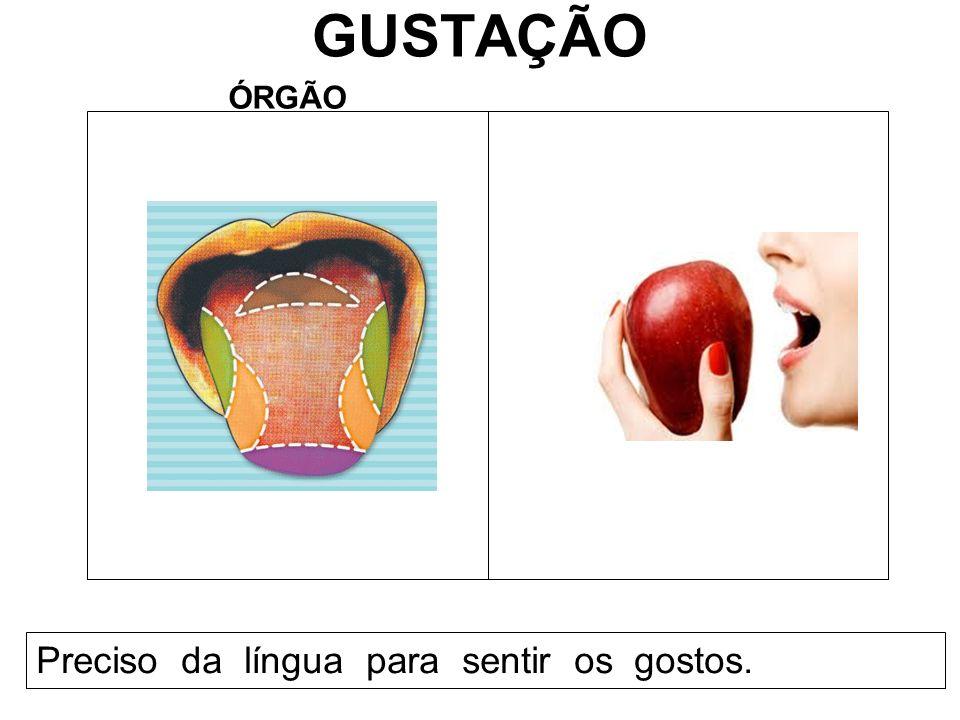 GUSTAÇÃO ÓRGÃO Preciso da língua para sentir os gostos.