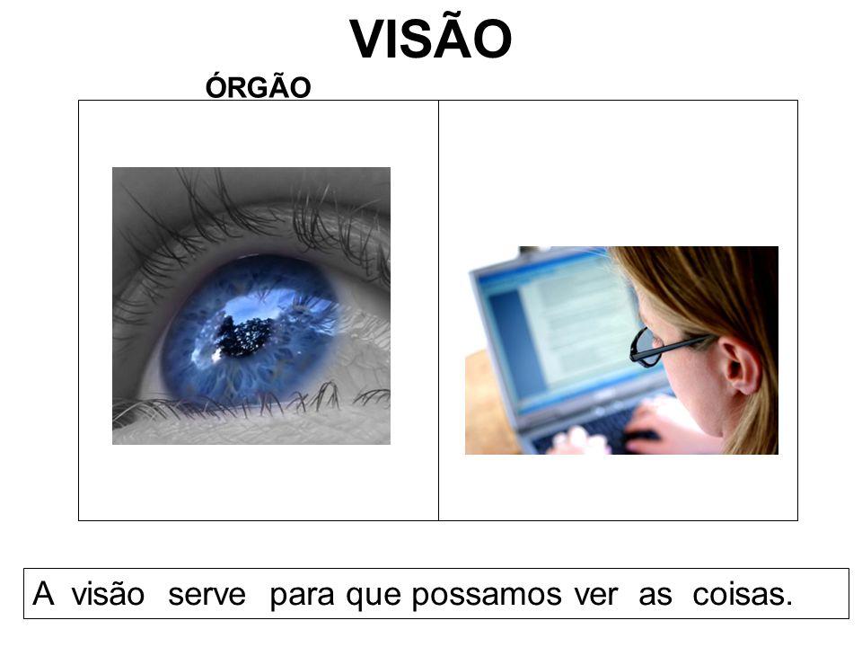 VISÃO ÓRGÃO A visão serve para que possamos ver as coisas.
