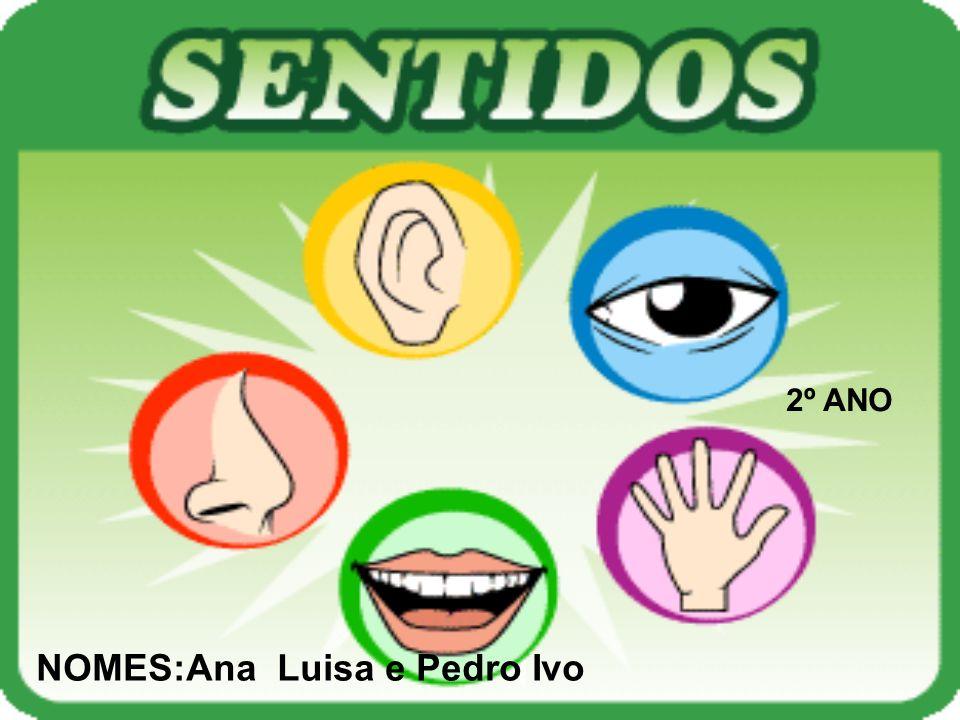 NOMES:Ana Luisa e Pedro Ivo