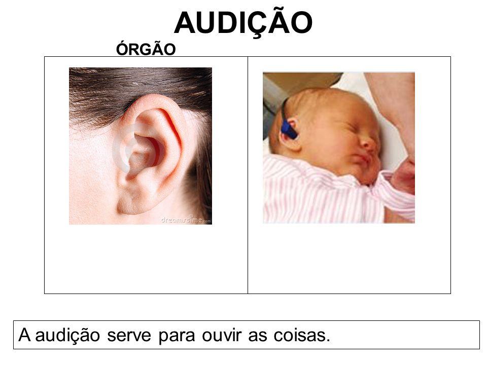AUDIÇÃO ÓRGÃO A audição serve para ouvir as coisas.