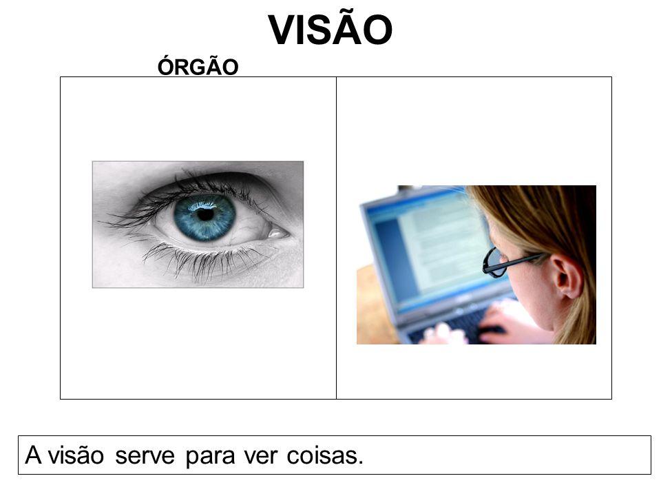 VISÃO ÓRGÃO A visão serve para ver coisas.