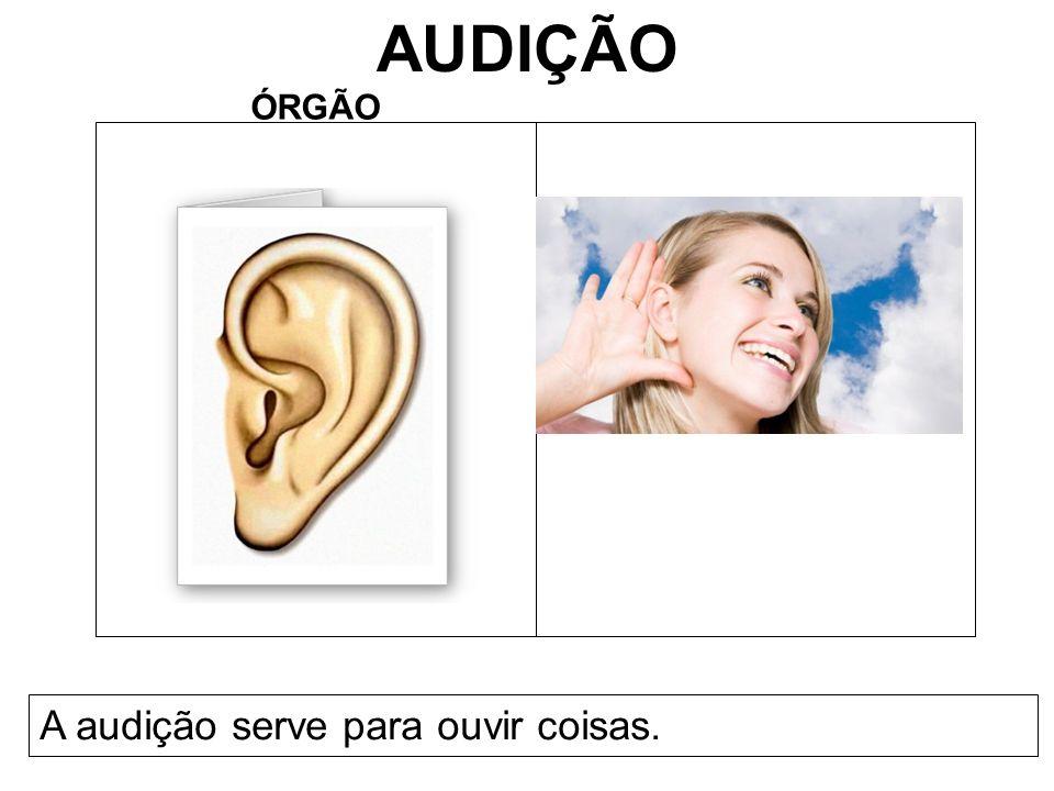 AUDIÇÃO ÓRGÃO A audição serve para ouvir coisas.