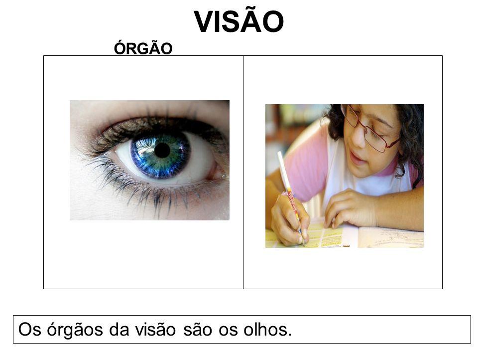 VISÃO ÓRGÃO Os órgãos da visão são os olhos.