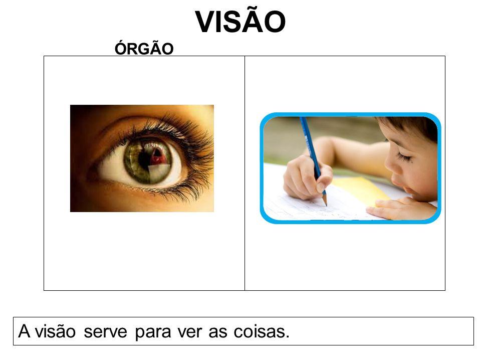 VISÃO ÓRGÃO A visão serve para ver as coisas.