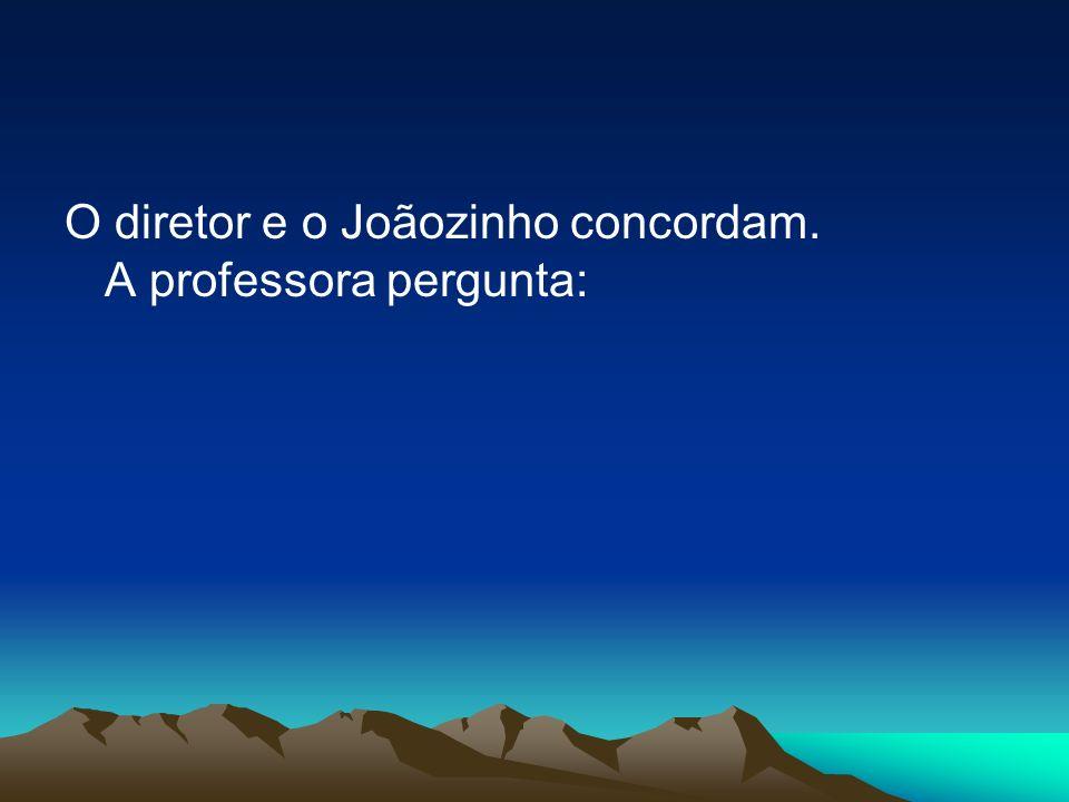 O diretor e o Joãozinho concordam. A professora pergunta: