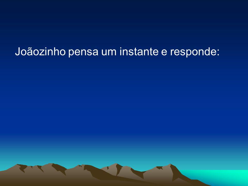 Joãozinho pensa um instante e responde: