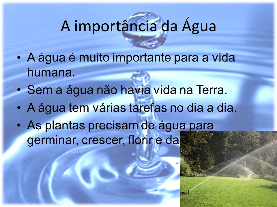 A importância da Água A água é muito importante para a vida humana.