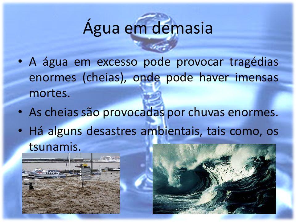 Água em demasia A água em excesso pode provocar tragédias enormes (cheias), onde pode haver imensas mortes.