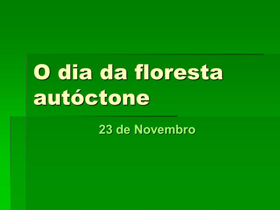 O dia da floresta autóctone