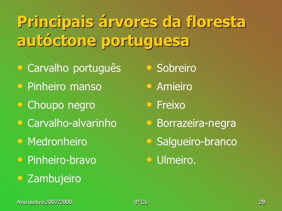 Principais árvores da floresta autóctone portuguesa