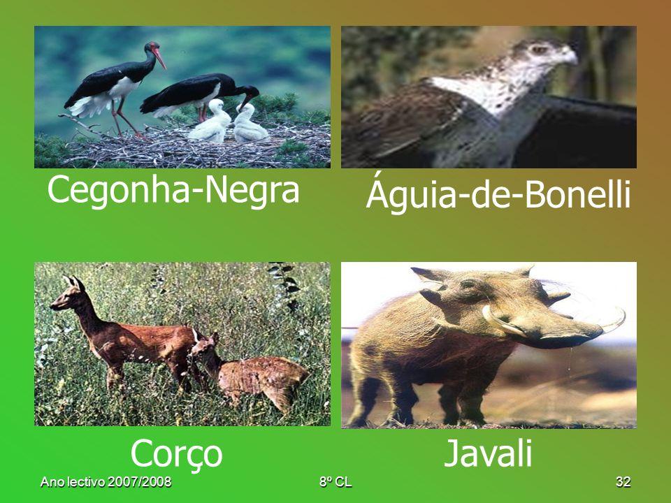 Cegonha-Negra Águia-de-Bonelli Corço Javali Ano lectivo 2007/2008