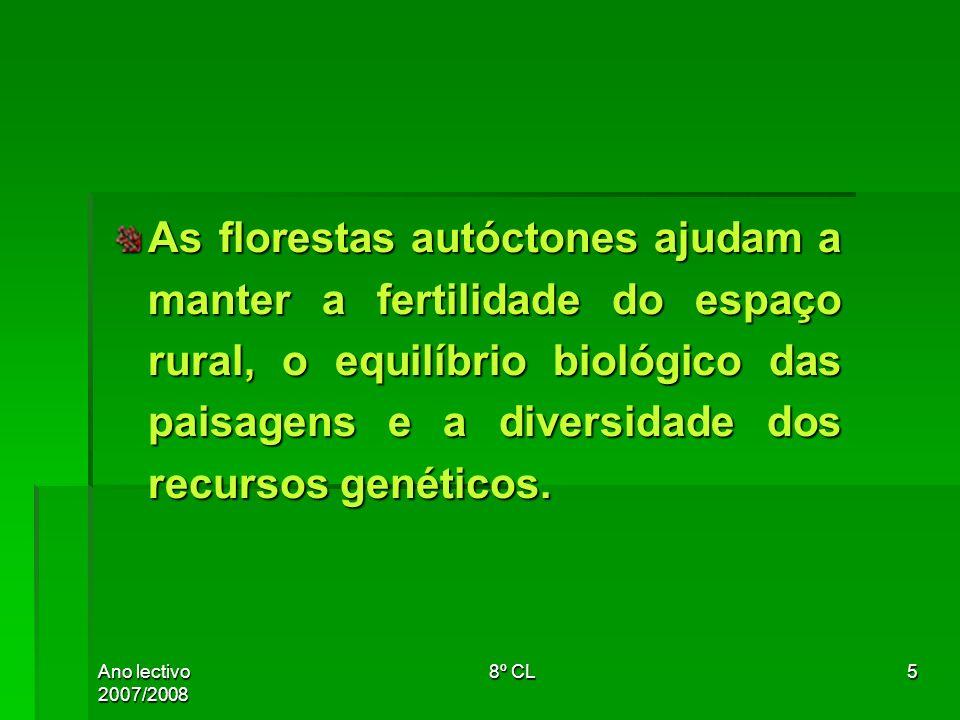 As florestas autóctones ajudam a manter a fertilidade do espaço rural, o equilíbrio biológico das paisagens e a diversidade dos recursos genéticos.