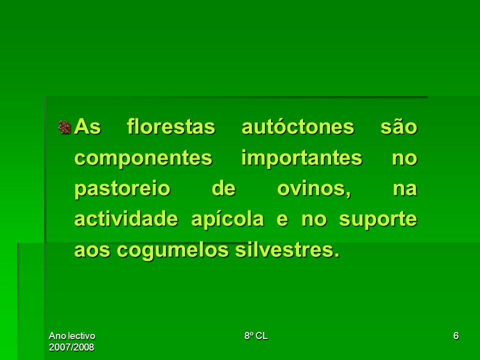 As florestas autóctones são componentes importantes no pastoreio de ovinos, na actividade apícola e no suporte aos cogumelos silvestres.