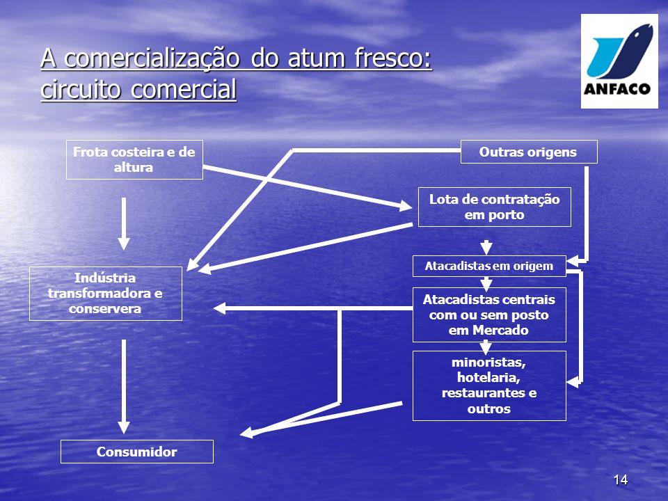 A comercialização do atum fresco: circuito comercial