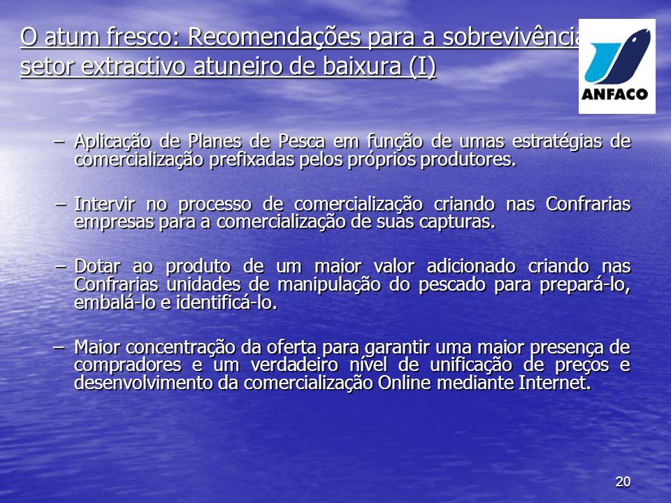 O atum fresco: Recomendações para a sobrevivência do setor extractivo atuneiro de baixura (I)