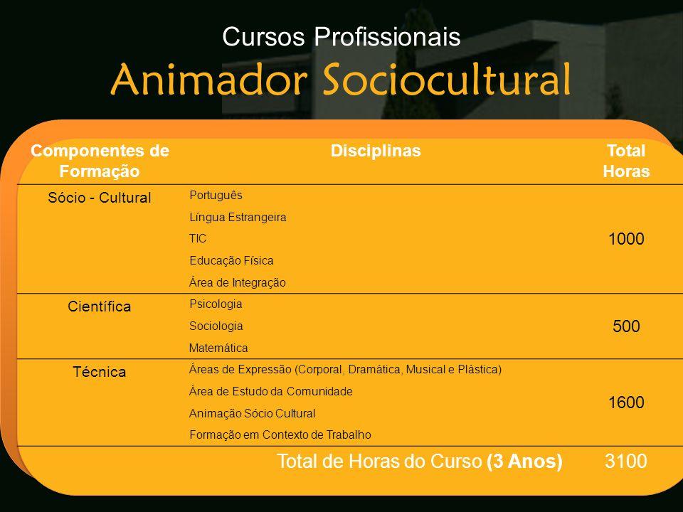 Cursos Profissionais Animador Sociocultural