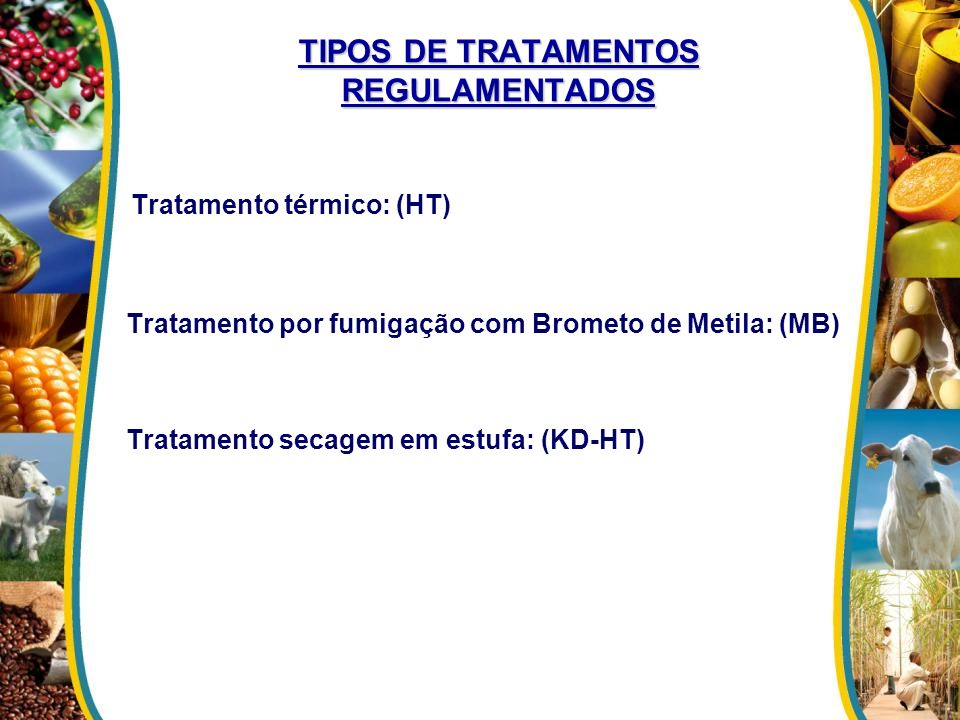 TIPOS DE TRATAMENTOS REGULAMENTADOS
