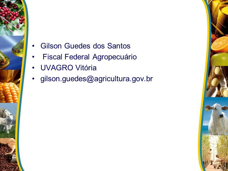 Gilson Guedes dos Santos