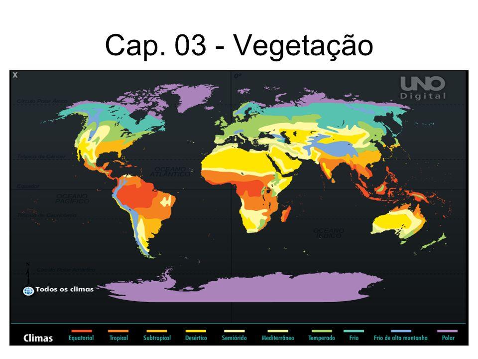 Cap. 03 - Vegetação